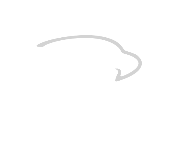 verette construction logo